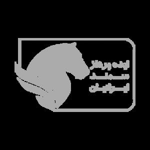 ایده پرداز سمند ایرانیان، کیوسک لمسی